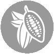Productor de cacao